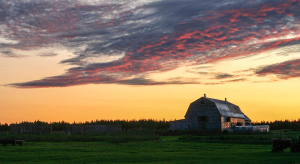 sunrise over barn